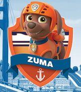Zuma 5w54