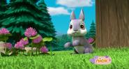 Bunnies (Friend)