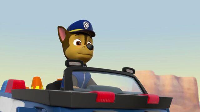 File:PAW.Patrol.S02E07.The.New.Pup.720p.WEBRip.x264.AAC 321154.jpg