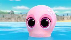 Baby Octopus 19