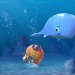 Baby Whale playing with the Diving Bell in