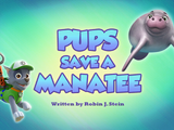 Pups Save a Manatee