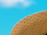 Farmer Yumi