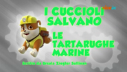 PAW Patrol I cuccioli salvano le tartarughe marine