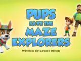 Pups Save the Maze Explorers