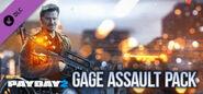 Gage Assault Pack