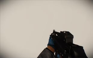 G36 animation