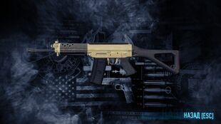 SIG SG-552 LB