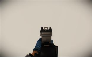 G36 ironsight