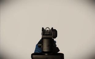 M16 ironsight
