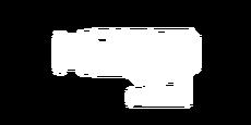 Signature Magnifier Gadget