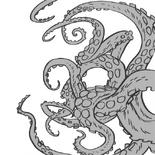Pattern-kraken