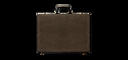 50 Blessings Briefcase FBI Files