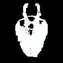 Mask-vespula