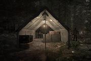 Intel-camps