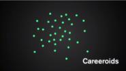Careeroids