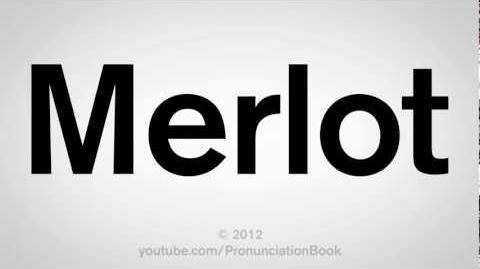 How to Pronounce Merlot