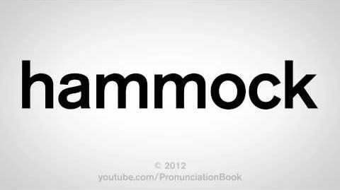 How to Pronounce Hammock