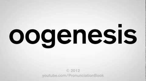 How to Pronounce Oogenesis