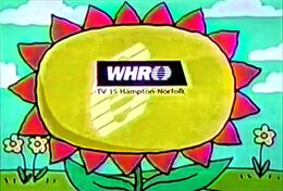 PTV Park Station ID - Big Flower (1998 WHRO-TV)