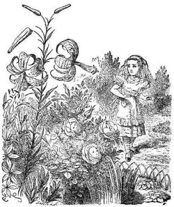Flowers frontispiece