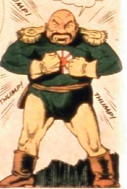 Captain nippon costume