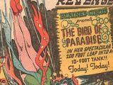Bird of Paradise (Narrative)