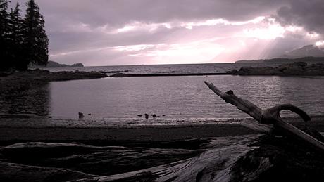 Low tide1