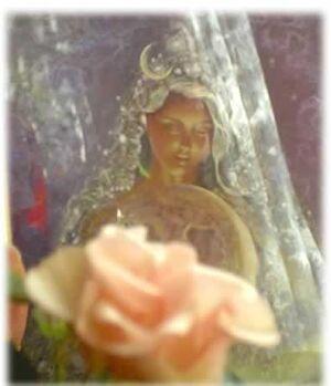 Tara yinyana5