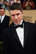Aidan+Gillen+22nd+Annual+Screen+Actors+Guild+1jS3oPBbTxol