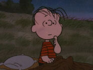 What Have We Learned, Charlie Brown (9)