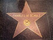 Schulz star.jpg