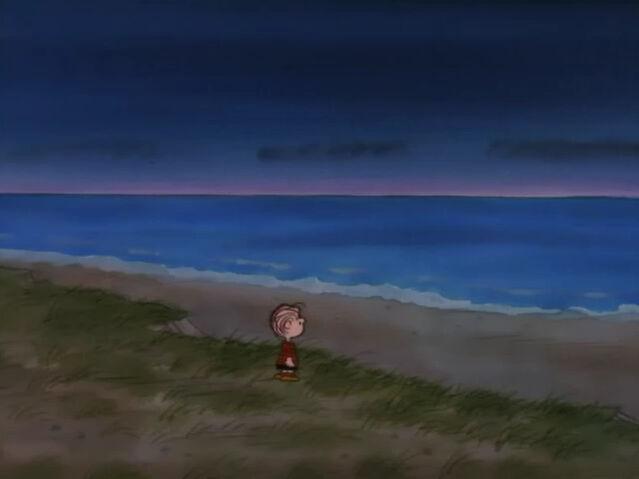 File:What Have We Learned, Charlie Brown (10).JPG