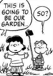 Lucy Rerun Garden