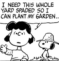 Lucy Snoopy Garden