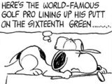 World Famous Golf Pro