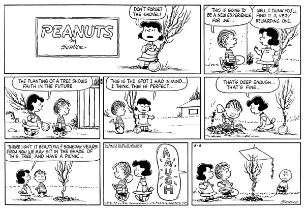 an analysis of the comic strip peanuts as a favorite of mine What does your favorite peanuts character say about you in the comic strip and in the tv specials but do you have a favorite peanuts character.