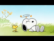 Oh Dear! Poor Snoopy