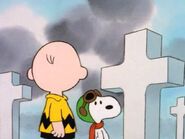 What Have We Learned, Charlie Brown (21)