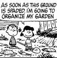 Lucy Linus Garden.jpg