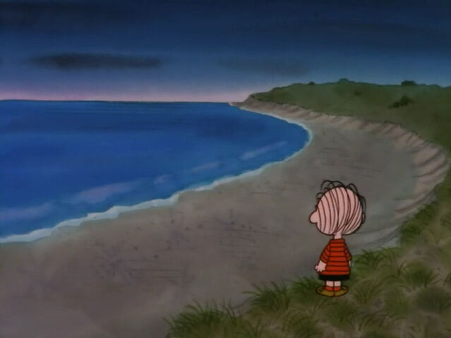 File:What Have We Learned, Charlie Brown (11).JPG