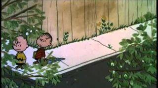 Un niño llamado Charlie Brown 3 7-0