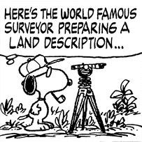 World Famous Surveyor