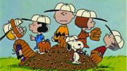 The Baseball Team