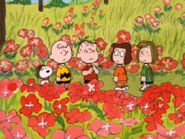 What Have We Learned, Charlie Brown (25)
