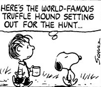 World Famous Truffle Hunter