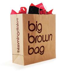 Brown Bag Jpg