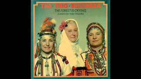 Trio Bulgarka - The Forest is crying - Sedyankata Ye Na Razvala (The working bee is over)
