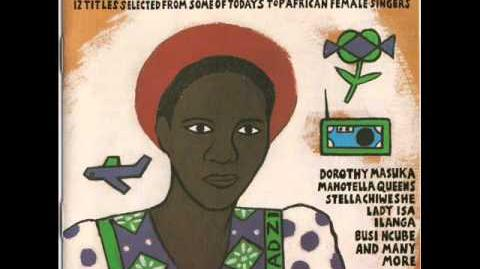 Stella Chiweshe - 'Sawura Wako' from Women of Africa