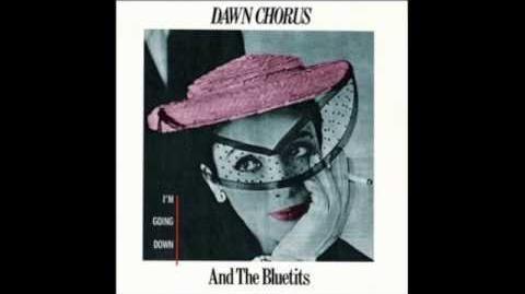 Dawn Chorus - I'm going down